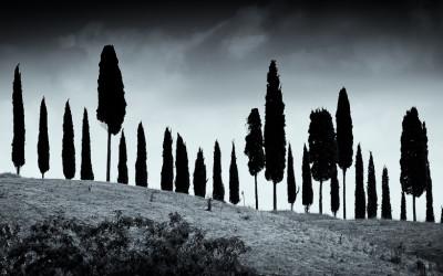 Tuscan Skyline