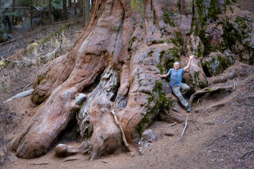 Me at Mariposa Grove