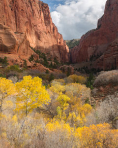 View Kolob Canyon